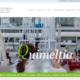diseñador web valencia, paginasweb